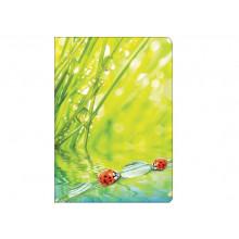 """Уголок А4 180мкм """"Ladybird"""""""