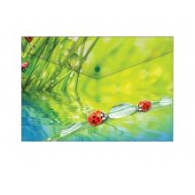 "Папка на кнопке А4 180мкм ""Ladybird"""