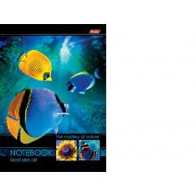 Бизнес-блокнот 96л. А5ф Подводный мир тв. пер. чистый 4 цв. блок