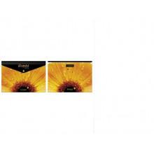 "Папка на кнопке А4 ""Hatber"" IFRESH-цветок"